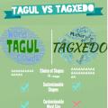 Tagul versus Tagxedo