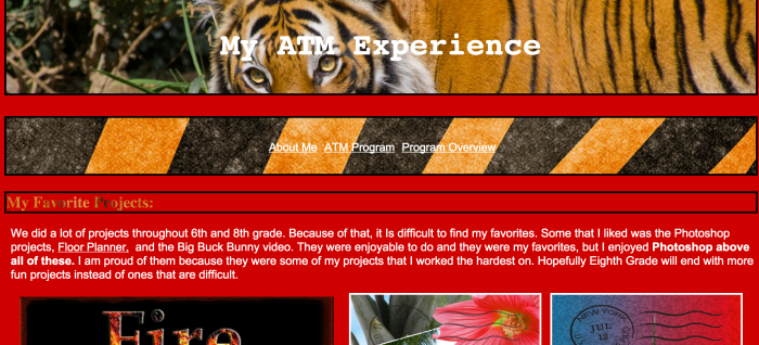 Dylan's website of multiple pages